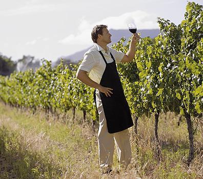 лучшие вина аргентины