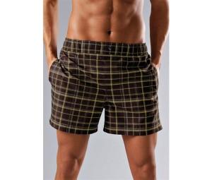 пляжные шорты 2011 2012 мужские