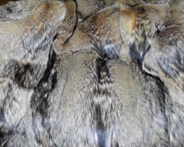 дубленки из меха канадского волка
