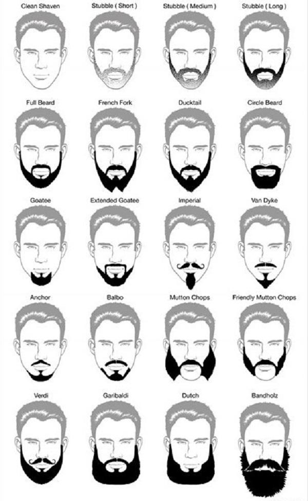 фото схемы видов мужской бороды