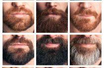 3 самых лучших триммеров для ухода за бородой