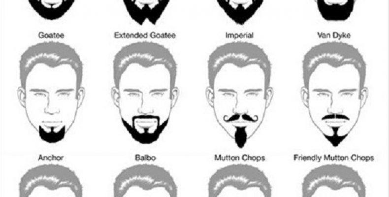 Стильная борода у мужчин фото, виды мужских бород фото
